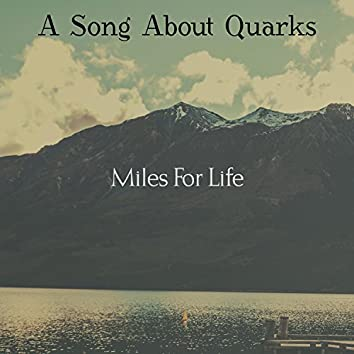 A Song About Quarks