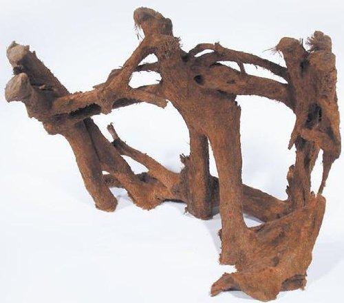 Mühlan Topartikel- 1 Mangrovenwurzel 30-40 cm, Wurzel, Mangrove