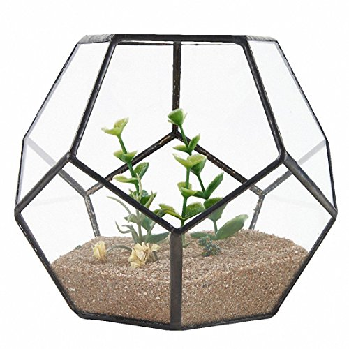 XZante Black Glass Geometric Terrarium Container Window Sill Decor Flower Pot Balcony Plant DIY Display Box (No Plant)
