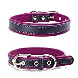 TFENG Hundehalsband, Verstellbarer Lederhalsband Basic Bling Halsbänder für Katzen und Hunde(Lila,S)