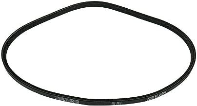 Powerlite V Belt