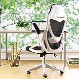 BERLMAN Ergonomic Mesh Office Chair Computer Chair with Flip-up Arms Adjustable Lumbar Support Desk...