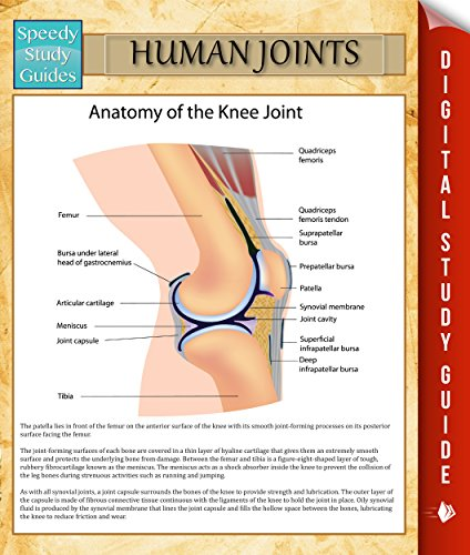 Download Human Joints: Speedy Study Guides (English Edition) B00NVS56PM