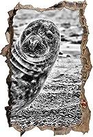KAIASH ウォールステッカー 小石のビーチでリラックスしたモノクロームダークシール3Dルックの壁の突破口壁またはドアのステッカー壁のステッカー壁のステッカー壁の装飾62x42cm