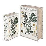 Vidal Regalos Set Dos Caja Libro 2 Tamaños Hierba Santa Herboristeria Decorativo y Funcional Diseño Antiguo 27 cm