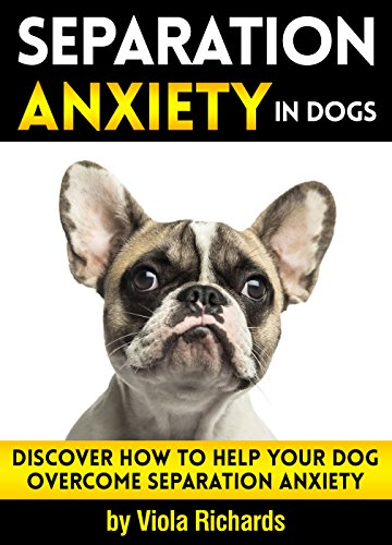Separation Anxiety in Dogs: Discover How to Help Your Dog Overcome Separation Anxiety by [Viola Richards]