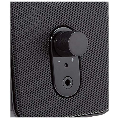 Trust Almo 2.0 USB PC Lautsprecher Set Schwarz & Amazon Basics - Computer-Lautsprecher für Schreibtisch oder Laptop | AC-Betrieb (EU-Version)