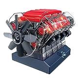 GUOGUO V8 Motor Bausatz, Modell-Motor selber Bauen, 250-Teiliges DIY Kit, Transparentes Motorgehäuse, ab 12 Jahren