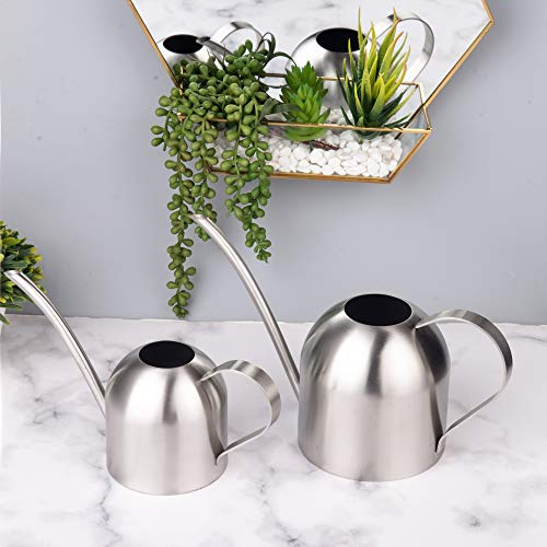 IMEEA Mini Watering Can Indoor for Kids House Desk Office Plants Bonsai Stainless Steel (15oz/450ml)