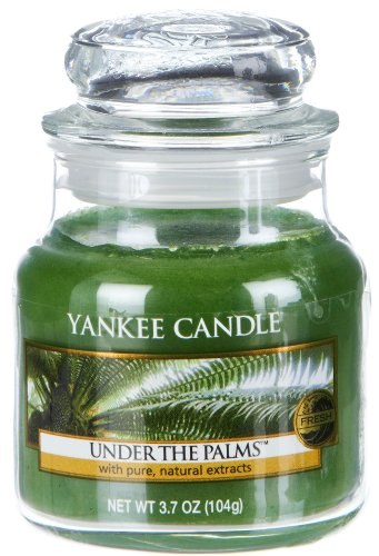Yankee Candle Under The Palms Small Jar Candle, Fresh Scent