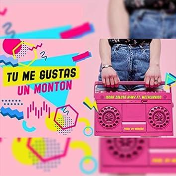 Tu Me Gustas un Monton (feat. Metalurgico)