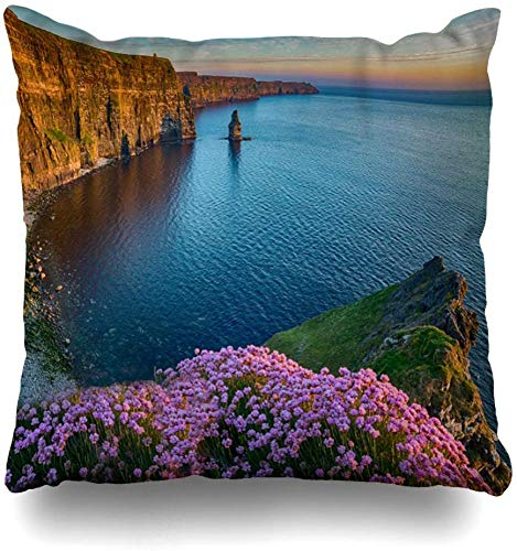 Fodera per cuscino fiore blu Moher Irlanda Campagna Attrazione turistica Contea di Clare Verde Natura Atlantic Way Federa per cuscino, 45X45 cm