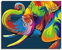 H-フレームレス:16 * 20インチのフレームレス、色 - ナンバーキットDIYオイルブラシ装飾の装飾のギフトで反射猫カラフルなキャンバスを描く絵画によってペイント (Color : E-with Frame)
