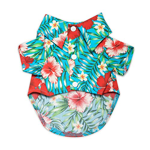 United Pups Hawaiian Shirt for Dogs Small to Medium Pets Cats Design for Summer Luau Style Beach Camp Vacation Floral Puppy T-Shirt (Chill Pups Blue, Size 2: Max Neck 11' Chest 16') Blue Size 2