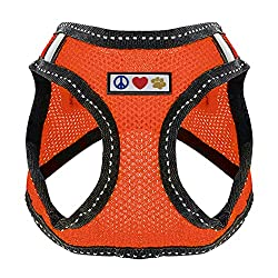 Pawtitas Pet Reflective Mesh Dog Harness, Step in or Vest Harness Dog Training Walking of Your Puppy/Dog - No More Pulling, Tugging, Choking