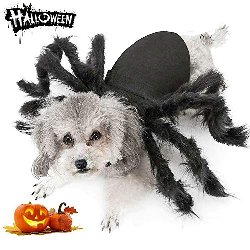 Dog Cat Spider Costume for Halloween Party Decoration, Halloween Cosplay Costumes for Small Dogs and Cat, Puppy Cat Dress Up Accessories