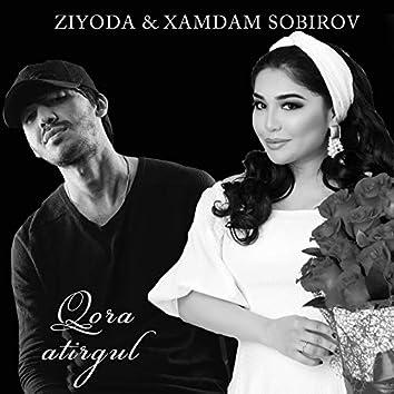 Qora Atirgul (feat. Xamdam Sobirov)