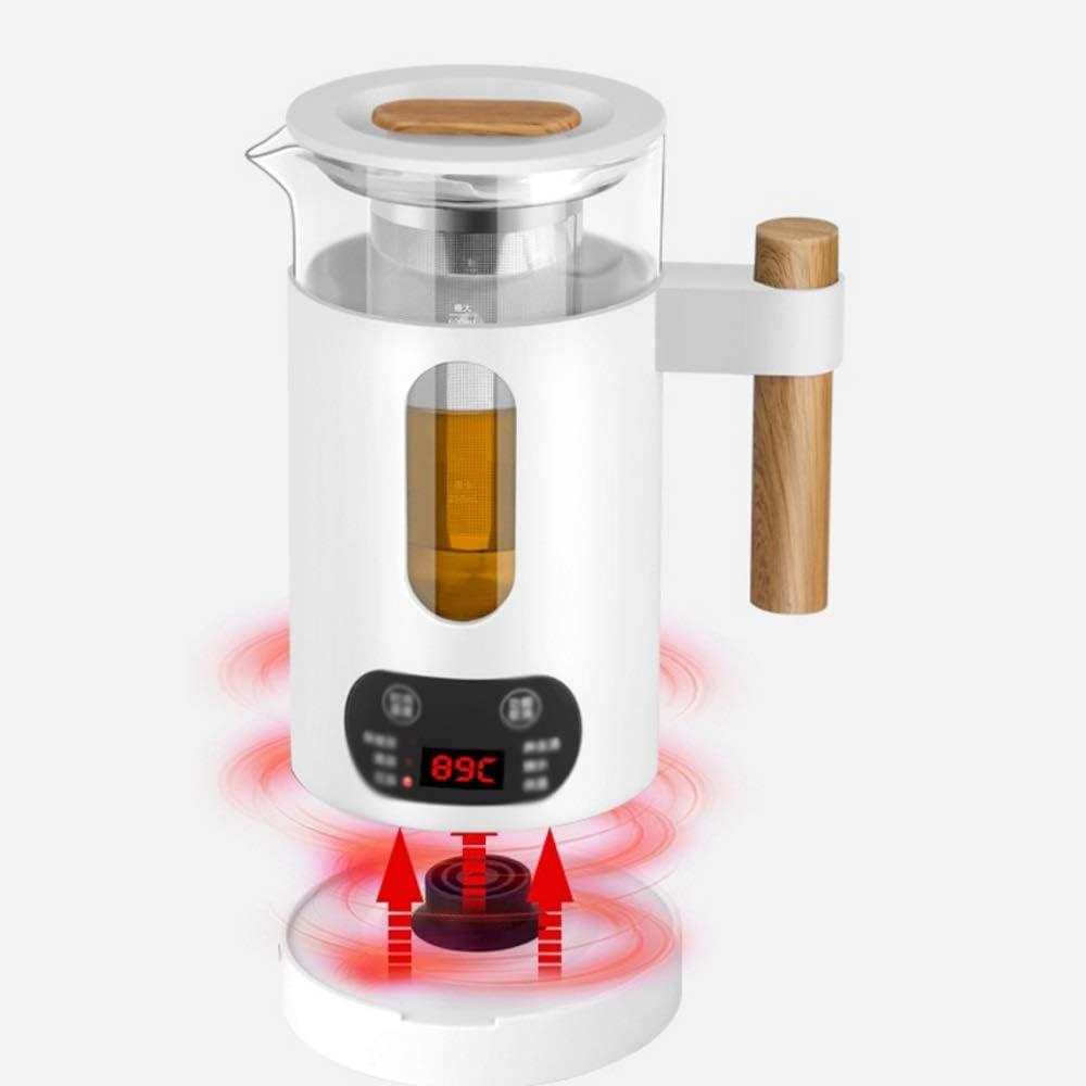 RYTLG Mini Bouilloire électrique Multifonction en Acier Inoxydable Pot de Conservation de la santé en Verre Bouilli Chaud théière Chauffe-Eau (Color : B) A