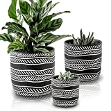 Terracotta Flowerpot Set of 3 Clay Plant Pot Modern Indoor Nursery Pot 5.2/4.6/3.2 Inch in Black Outdoor Cactus Succulent Potted Plants with Drainage Hole