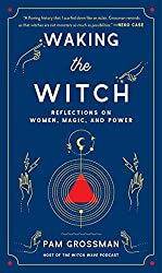 waking the witch book cover
