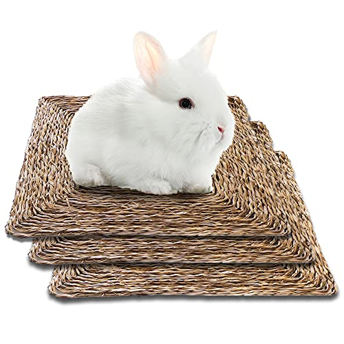 SunGrow Seagrass Rabbit Mat, 12x12 Inches, Edible, Handmade, Hay Mat for Sleeping, Chewing, Nesting,...