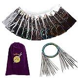 Agujas de tejer circulares de acero inoxidable de 14 piezas, juego de agujas intercambiables de profesión de 80 cm, herramientas de tejer accesorios de ganchillo para bricolaje (2,25 - 10 mm)