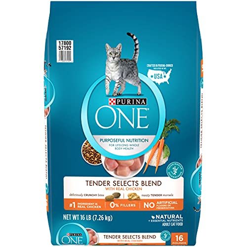 Purina ONE Natural Dry Cat Food, Tender Selects Blend With Real Chicken - 16 lb....