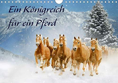 Ein Königreich für ein Pferd (Wandkalender 2021 DIN A4 quer)