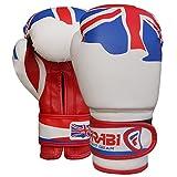 FARABI Guantes de Boxeo para niños de la Serie de Bandera, Almohadillas de Entrenamiento, Bolsas de Boxeo, Sparring, Serie de Bandera (Inglaterra, 6 onzas)