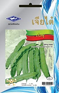 Wing Bean (25 Seeds) Seeds - 1 Package From Chai Tai, Thailand