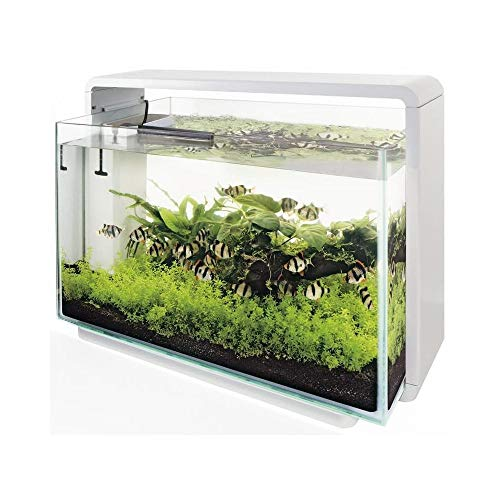 SuperFish Home Aquarium - 58.5x32x42.5 cm - 60L - Wit