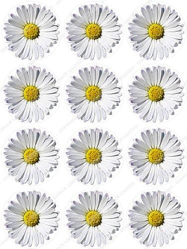 12 x Cakeshop decoración para pasteles comestibles PRECORTADAS de Flores Blanco