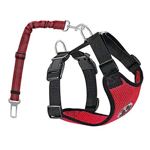 Nasjac Hund Auto Geschirr Sicherheitsgurt-Set, Pet Vest Harness mit Sicherheitsgurt, atmungsaktives Material und Verstellbarer elastischer Gurt für Hunde, die im Freien Laufen (Rot Mesh, S)