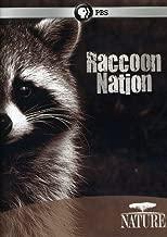 Nature: Raccoon Nation