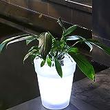 LED Plant Pot,Solar Power Flowerpot Illuminated Flower Pot with LED Lighting Transparent Planter Vase Landscape Decorative Light for Desk Garden Yard(White)