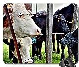 Alfombrilla de ratón para Juegos 30 * 25 * 0.3cm Alfombrilla para ratón con Bordes cosidos para el hogar y la Oficina Antideslizante Naturaleza Perro Mascota Granja Animales Cerca Vacas