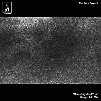Cemetery Acid Trip (Rough Trio Mix)