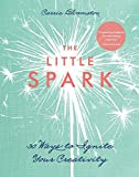 The Little Spark: 30 Ways to Ignite Your Creativity (English Edition)