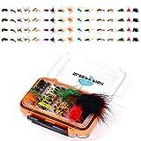 64-teiliges Fliegenfischen, Trockenfliegen, Nassfliegen-Sortiment-Set mit wasserdichter Fliegenbox für Forellen- und Barschangeln
