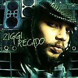 Songtexte von Ziggi Recado - Recado