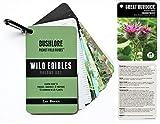Bushlore Wild Edible Plants Cards - 19 Pocket Field Guide Emergency Survival Kit Disaster Camping Preparedness Card EDC Backpack Wallet Ultimate Tiny Waterproof Food Source Tool Find Identify Harvest