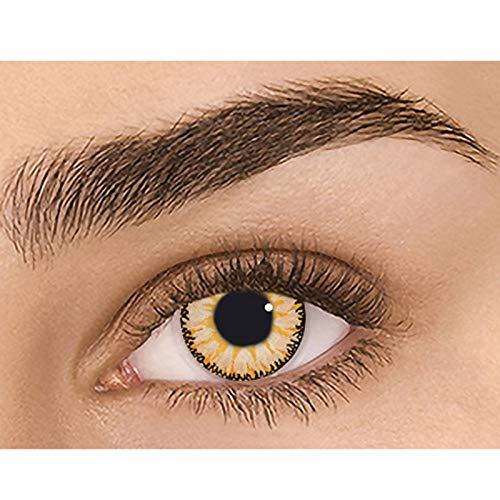 Topqualität Farbige Kontaktlinsen Jahreslinsen, Ohne Sehstärke,Flexiblen Hochdeckende Cosplay Kontaktlinsenfarbe, Durchmesser 14.5mm, 1Paar Kontaktlinse (mehrfarbig 4, 1 Paar)