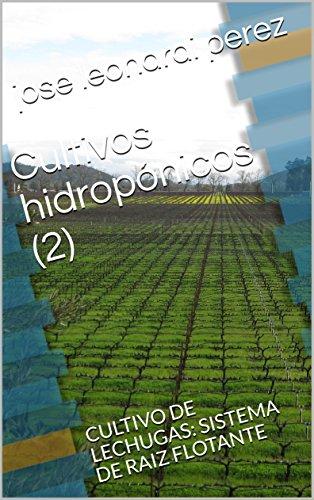 Cultivos hidropónicos (2): CULTIVO DE LECHUGAS: SISTEMA DE RAIZ FLOTANTE (hidroponia)