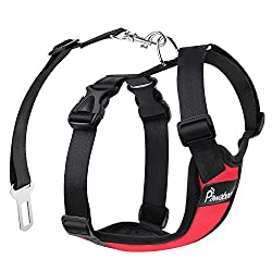 Best Car Safety Products for Pets Review, PAWABOO Dog Safety Vest Harness, Dog harness, Pet Safety, Car Safety Products for Pets