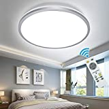 DLLT 35W Modern Dimmable LED Flush Mount Ceiling Light Fixture with Remote-15 Inch Round Close to Ceiling Lights for Living Room\Bedroom\Kitchen\Dining Room Lighting, Timer, 3 Light Color Changeable