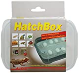 Lucky Reptile HB-01 HatchBox