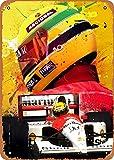Fanzi Metallschild im Vintage-Look – Formel 1