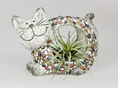 CAGO Pflanztopf Katze Steingefäß Gartentopf