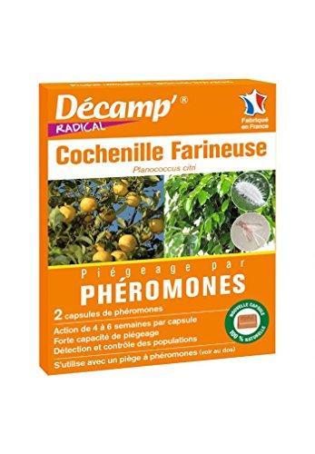 Scopri offerta per Scamp - Peromone contro le coccinelle farinose