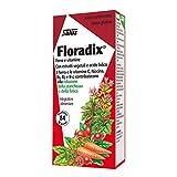 Floradix Hierro 84 comprimidos de Salus